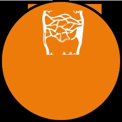 Lymphoedeme primitif